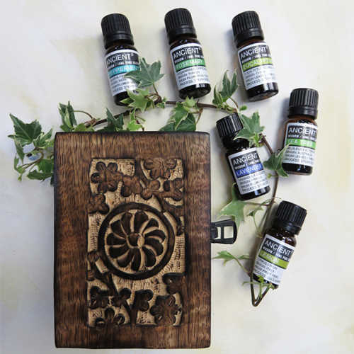 Aromatherapy Starter Gift Set Top 6 Oils