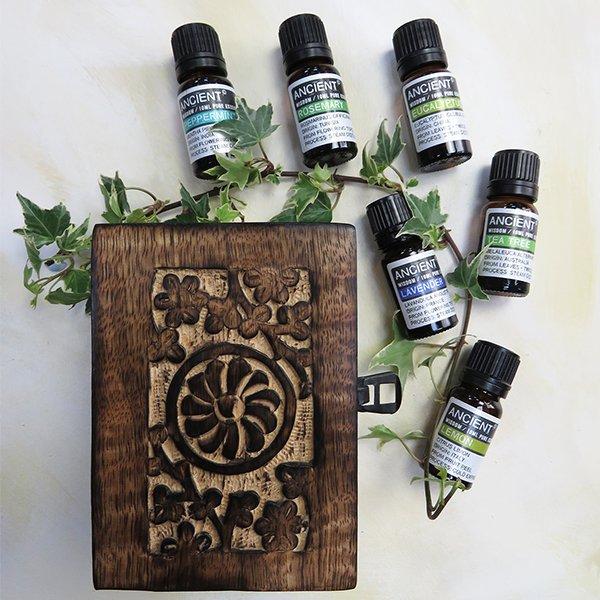 Aromatherapy Starter Gift Set Top 6 Oils