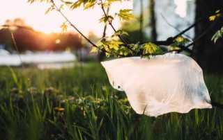 6 Ways to go Plastic-free on Day Trips